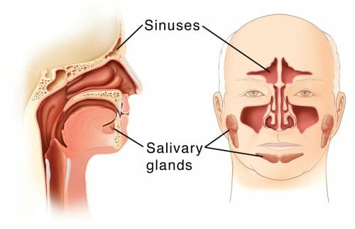 how to relieve sinus pressure headachenaturally | Powerful Enzymes