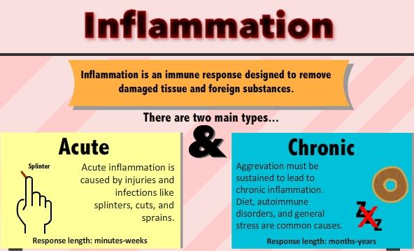 benefits serrapeptase enzyme for inflammation image