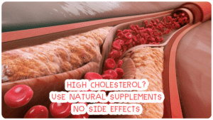 What supplements lower cholesterol