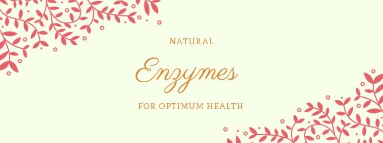 Buy the Serrapeptase enzyme