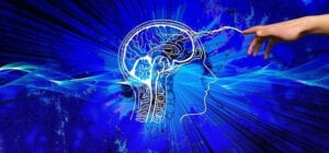 Brain and memory supplements