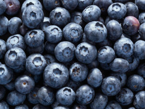 Berries supplements for memory and brain
